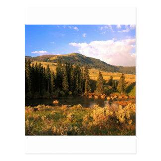 Vale Yellowstone Wyoming de Lamar da cena Cartão Postal