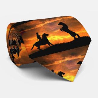 Vaqueiro e laço selvagem do garanhão gravata