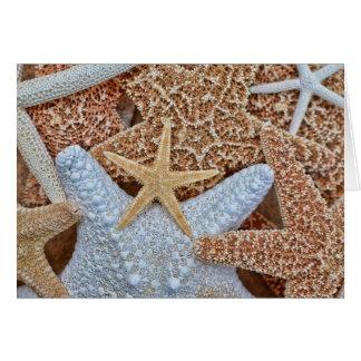 Variedade colorida da estrela do mar cartão comemorativo