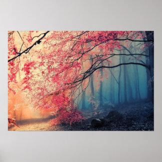 Verão e inverno na floresta pôster