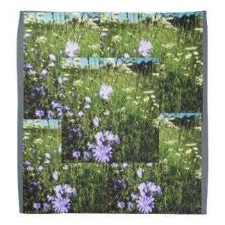 Verde azul cinzento do bandana do cornflower dos