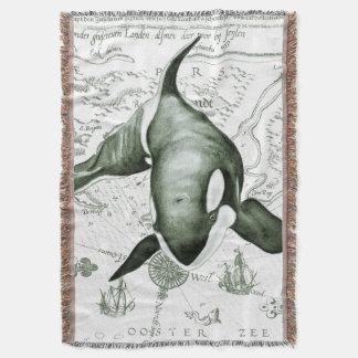 Verde do mapa da orca manta