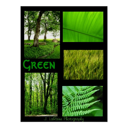 Verde, J. LaRaine Fotografia Posters