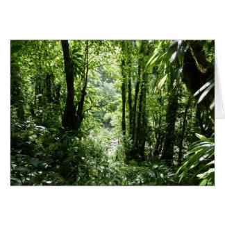 Verde tropical da floresta tropical II Cartão