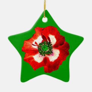 Verde verde branco vermelho da estrela do ornamento de cerâmica estrela