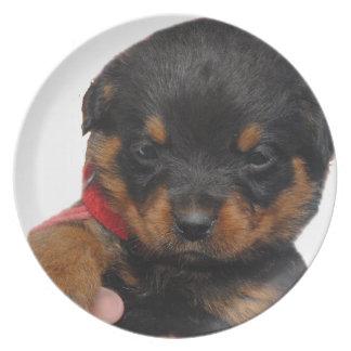 Vermelho do filhote de cachorro de Rottweiler Pratos De Festas