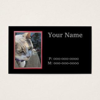Veterinário Cartão De Visitas