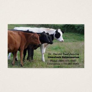 Veterinário dos rebanhos animais ou cartão dos cartão de visita