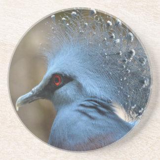 Victoria coroou o pombo porta-copos de arenito