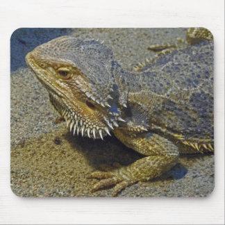 Vida sob o fogo - dragão farpado mousepad
