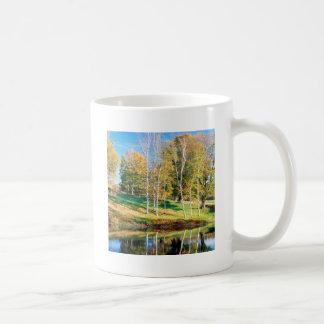 Vidoeiro Vermont das árvores Canecas