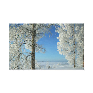 Vidoeiros da neve