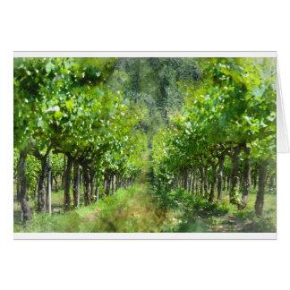 Vinhas no primavera em Napa Valley Califórnia Cartão Comemorativo