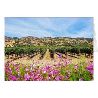 Vinhedo de Napa Valley Califórnia Cartão