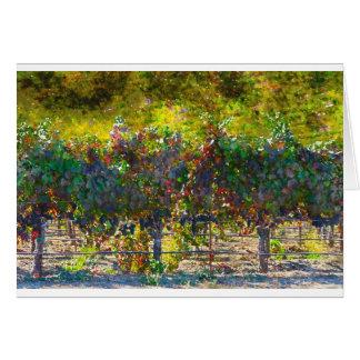 Vinhedo em Napa Valley Califórnia Cartão