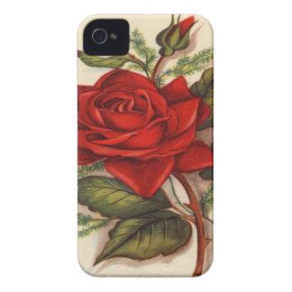 Vintage, caixa de Blackberry da rosa vermelha Capinha iPhone 4