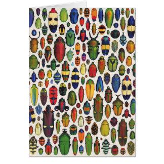 Vintage colorido besouros ilustrados cartão