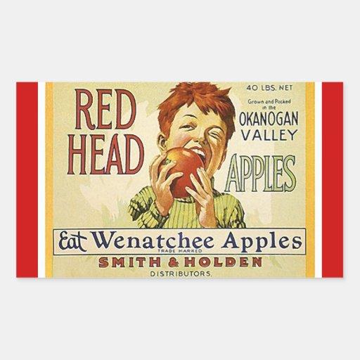 Vintage da etiqueta que anuncia maçãs principais adesivo em forma retangular