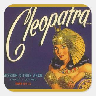 Vintage da etiqueta que anuncia o citrino de adesivo quadrado