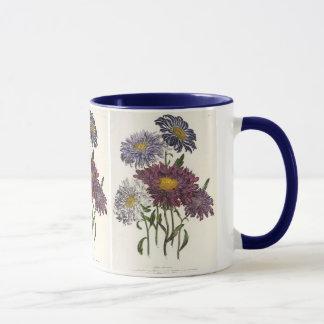 Vintage floral, flores roxas antigas do áster caneca
