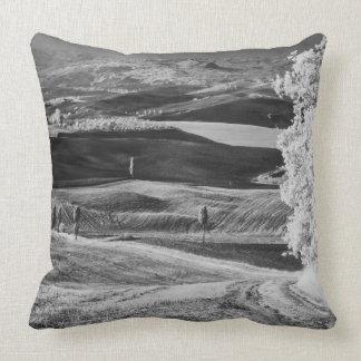 Vista preta & branca da estrada de enrolamento travesseiros