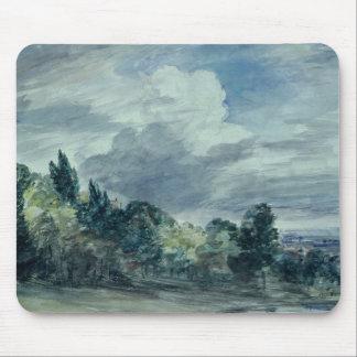 Vista sobre uma paisagem larga, com as árvores na  mouse pad