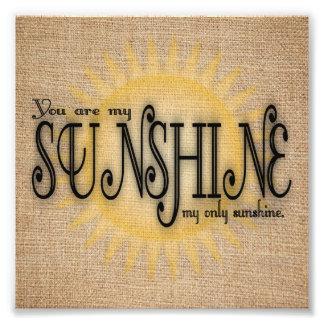 Você é minha luz do sol na serapilheira impressão de foto