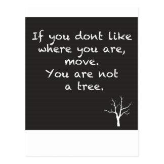 Você não é uma árvore cartão postal