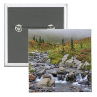 WA, parque nacional de Monte Rainier, angra de Edi Bóton Quadrado 5.08cm