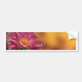 Waterdrop na flor adesivos