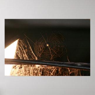 Web de aranha no sótão do feno pôster