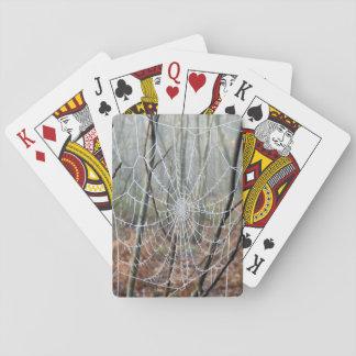 Web de cartões de jogo europeus da aranha de cartas de baralho