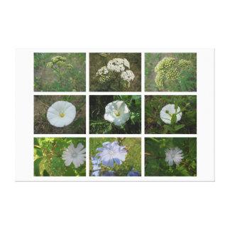 Wildflowers. Guloseima Impressão Em Tela