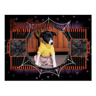 Wrigley - rato - Terrier - Photo-2 Cartão Postal