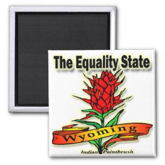 Wyoming o pincel indiano do estado da igualdade ímã quadrado