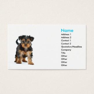 yorkshire terrier do modelo de cartão de negócios