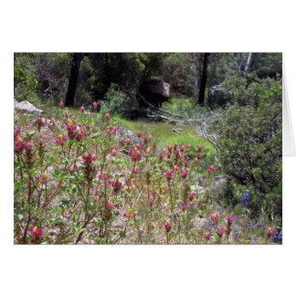 Yosemite na primavera:  Lupine do Harlequin Cartão De Nota