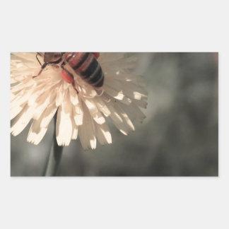 Zangão na flor adesivo retangular