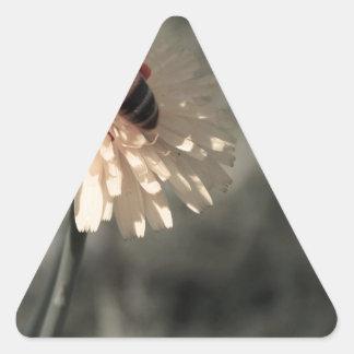 Zangão na flor adesivo triangular