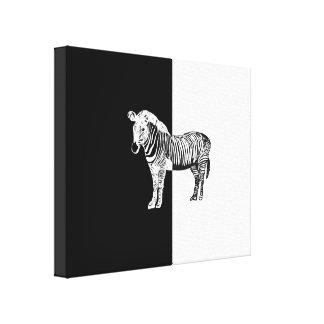 Zebra clássica preto e branco