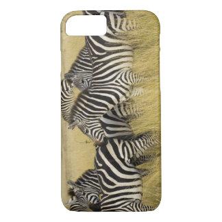 Zebra das planícies (quagga do Equus) na grama, Capa iPhone 7