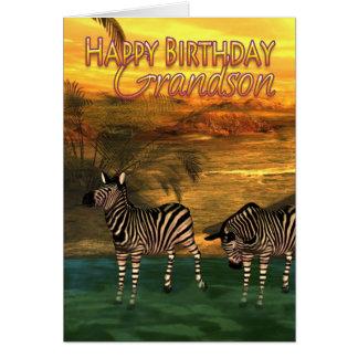 Zebras do cartão de aniversário do neto na água