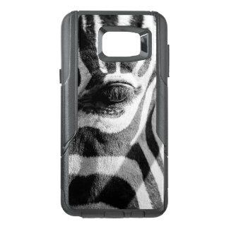 Zumbido da zebra